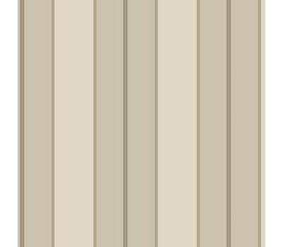 Designer Series Ronald Redding Stripes Resource TR4273