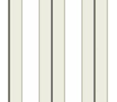 Designer Series Ronald Redding Stripes Resource TR4274